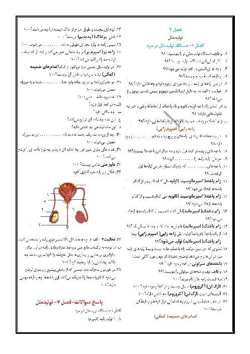 سوالات امتحانی زیست شناسی (2) یازدهم دبیرستان ملا محمد بجنوردی | فصل 7 | گفتار 1: دستگاه تولید مثل در مرد