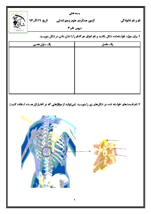 آزمون عملکردی علوم تجربی پنجم دبستان شاکرین شیراز    درس 5 و 6