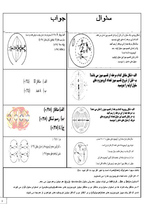 نمونه سوالات تصویری زیست شناسی (2) یازدهم رشته تجربی + پاسخ | تقسیم میوز و میتوز