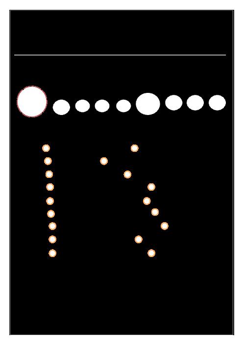 آزمون عملکردی علوم چهارم | درس 8: آسمان در شب