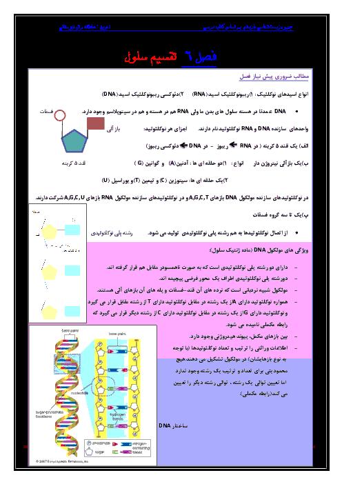 جزوه زیست شناسی (2) یازدهم رشته تجربی | فصل ششم- تقسیم یاخته