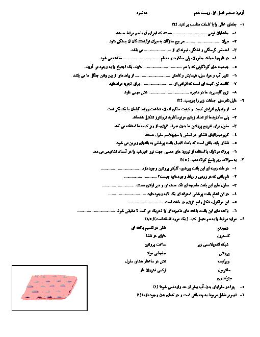 آزمون زیست شناسی دهم دبیرستان فرزانگان زنجان | فصل 1: دنیای زنده