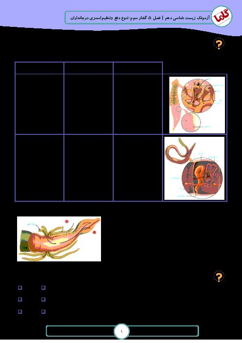نمونه سوالات امتحانی زیست شناسی (1) دهم رشته تجربی | فصل 5: تنظیم اسمزی و دفع مواد زائد - گفتار 3: تنوع دفع و تنظیم اسمزی در جانداران