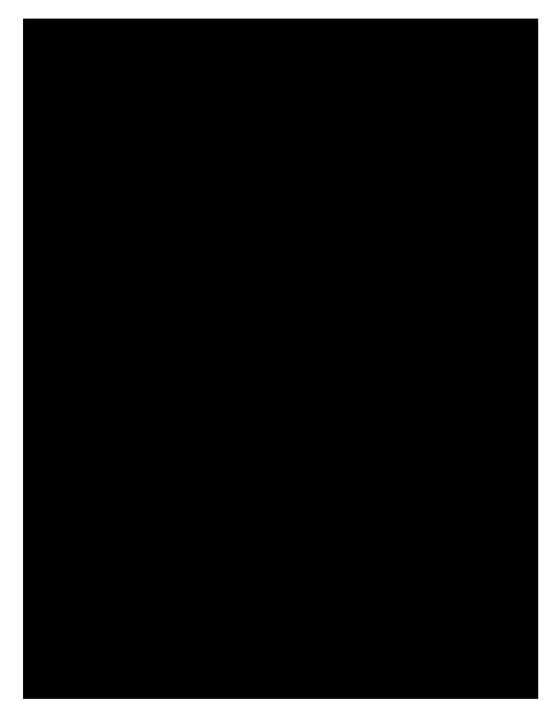 آزمون نوبت دوم ریاضی (2) تجربی پایه یازدهم دبیرستان فاطمه زهرا | منطقه شبانکاره - اردیبهشت 1397