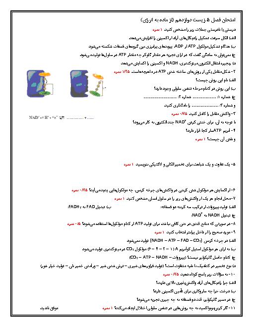 امتحان فصل 5 زیست دوازدهم تجربی | از ماده به انرژی