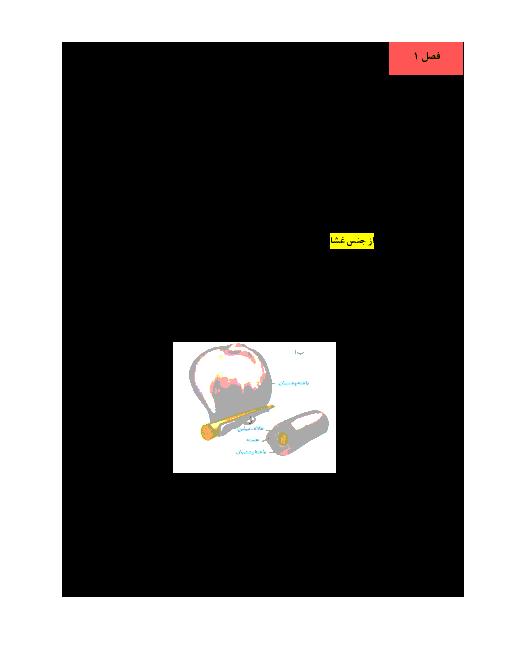 جزوه آموزش کامل زیست شناسی (2) یازدهم رشته تجربی | فصل 1 تا 9