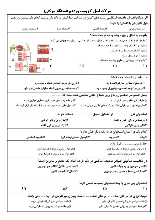آزمون تستی زیست شناسی (2)  پایۀ یازدهم رشته تجربی با جواب - فصل 3: دستگاه حرکتی