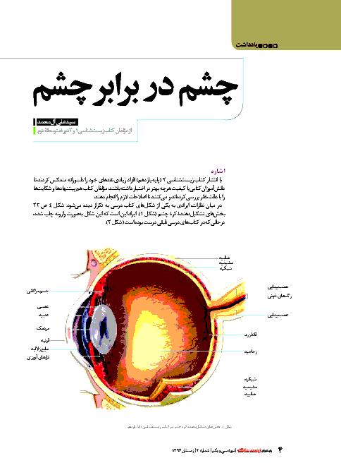 مقاله چشم در برابر چشم برای بررسی اشکال تصویر چشم در کتاب درسی زیست شناسی (2) پایه یازدهم