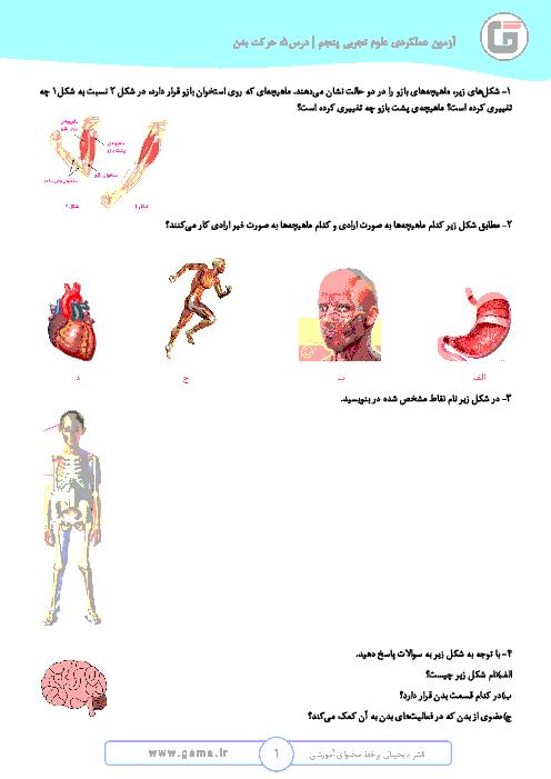 فعالیت های عملکردی علوم تجربی پنجم  ابتدائی |  درس 5: حرکت بدن