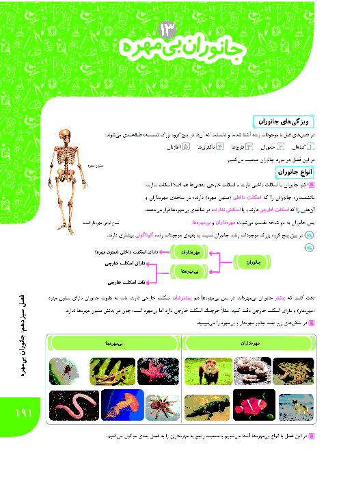 آموزش درس، تمرین و آزمون فصل 13 ام علوم نهم | جانوران بی مهره