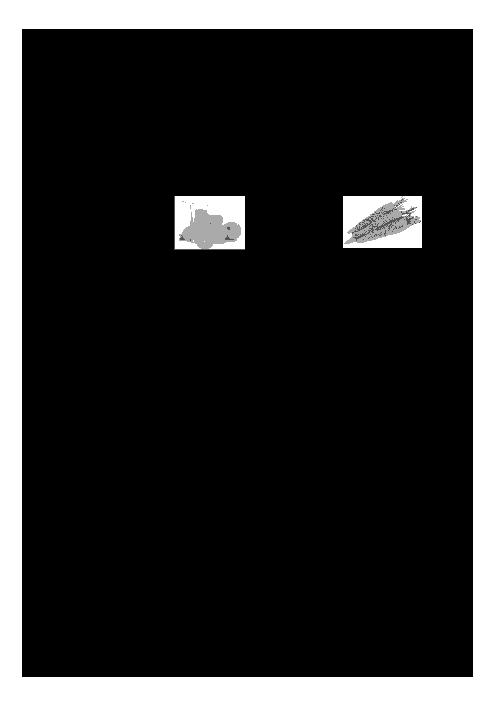 سؤالات و پاسخنامه امتحان هماهنگ استانی نوبت دوم خرداد ماه 96 درس عربی پایه نهم | نوبت صبح و عصر استان خراسان رضوی