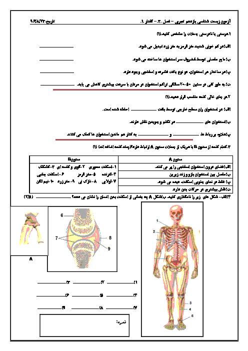 امتحان زیست شناسی (2) یازدهم رشته تجربی | فصل سوم: دستگاه حرکتی (گفتار 1: استخوانها و اسکلت)