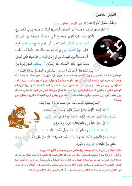 گام به گام درس پنجم عربی (1) پایه دهم مشترک ریاضی و تجربی   ترجمه متن درس، پاسخ تمرین ها و نورهای قرآن