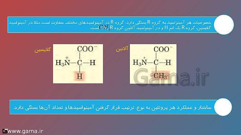 پاورپوینت تدریس زیست شناسی دوازدهم تجربی | فصل 1: مولکول های اطلاعاتی | گفتار 3: پروتئینها- پیش نمایش