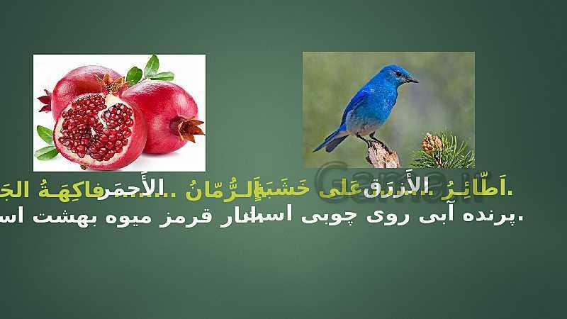 پاورپوینت عربی پایه نهم | الدَّرْسُ التّاسِعُ: نُصوصٌ حَوْلَ الصِّحَّةِ- پیش نمایش