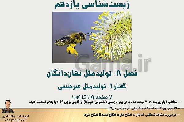 پاورپوینت زیست شناسی یازدهم تجربی | فصل 8: تولید مثل نهان دانگان (گفتار 1: تولید مثل غیر جنسی)- پیش نمایش