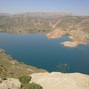 نمونه دولتي هفتم