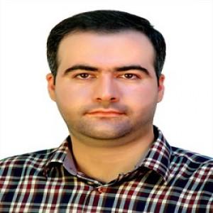 حامد سبزواری
