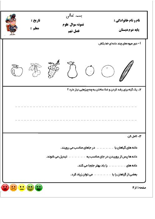 کاربرگ فصل 9 علوم تجربی دوم دبستان شهید صدری | سرگذشت دانه