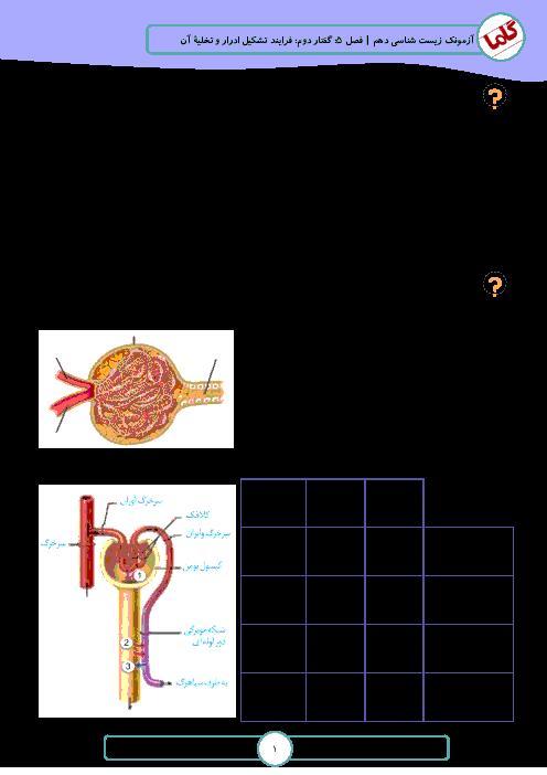 نمونه سوالات امتحانی زیست شناسی (1) دهم رشته تجربی | فصل 5: تنظیم اسمزی و دفع مواد زائد - گفتار 2: فرایند تشکیل ادرار و تخلیۀ آن