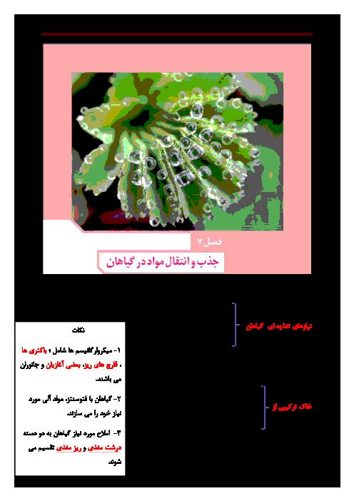 جزوه جمعبندی زیست شناسی (1) دهم رشته تجربی | فصل هفتم: جذب و انتقال مواد در گیاهان
