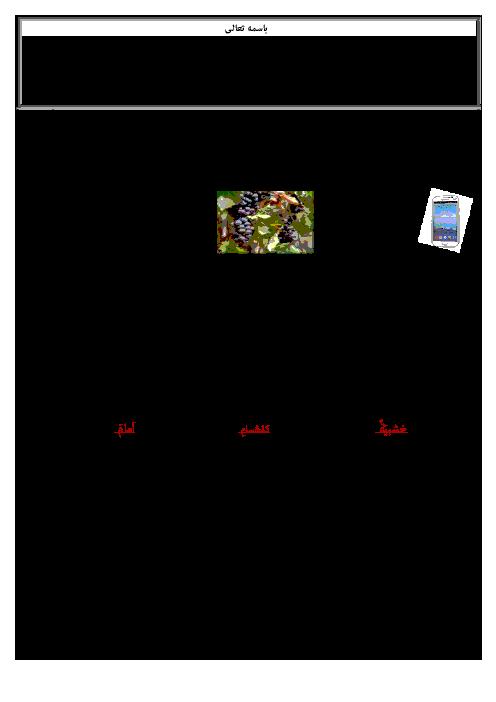 نمونه سوال عربی هفتم نوبت اول آموزشگاه سهروردی | دیماه 94