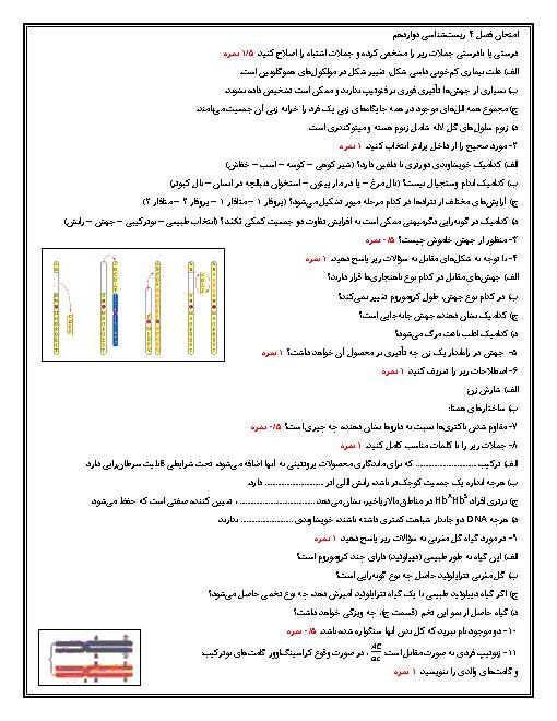 امتحان فصل 4 زیست شناسی (3) دوازدهم تجربی