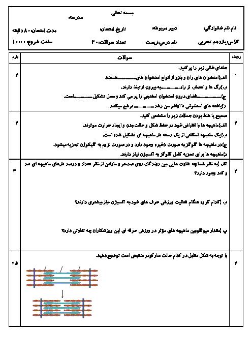 امتحان زیست شناسی (2) یازدهم رشته تجربی | فصل سوم: دستگاه حرکتی