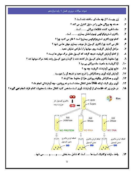نمونه سؤالات امتحانی فصل 1 زیست شناسی (3) پایه دوازدهم   فصل 1: مولکولهای اطلاعاتی