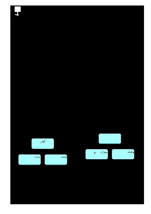 آزمونک علوم تجربی هشتم  | فصل پنجم: حس و حرکت