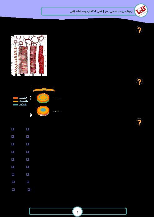 نمونه سوالات امتحانی زیست شناسی (1) دهم رشته تجربی | فصل 6: از یاخته تا گیاه - گفتار 2: سامانۀ بافتی