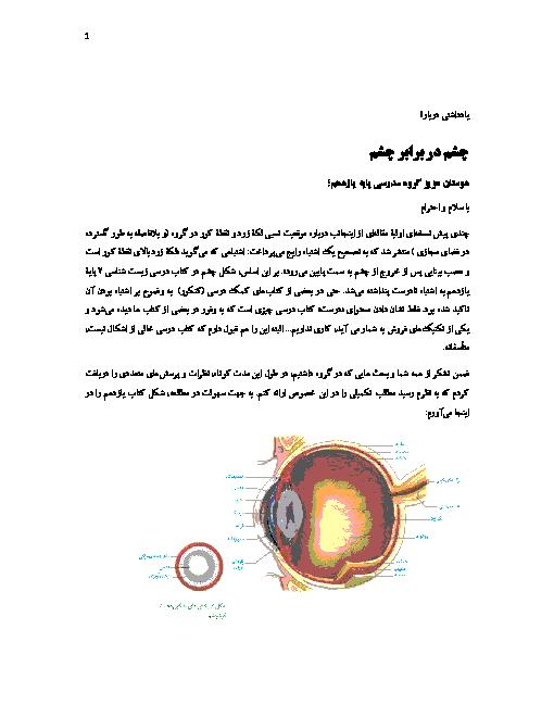 موقعیت نسبی لکۀ زرد و نقطۀ کور در چشم