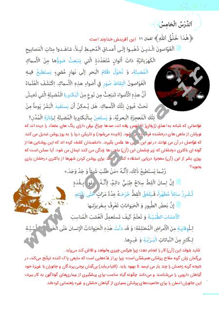 گام به گام درس پنجم عربی (1) پایه دهم مشترک ریاضی و تجربی | ترجمه متن درس، پاسخ تمرین ها و نورهای قرآن