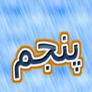 امیر حسین محمودی